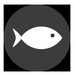 4.poisson